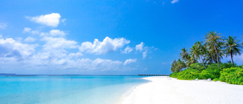 Fotografía de una playa donde se puede ver un poco de vegetación